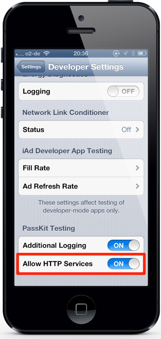 Developer Settings on an iPhone