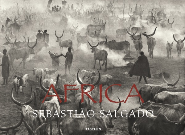 Book cover: Africa